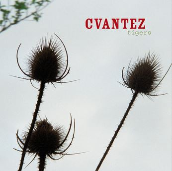 cvantez_tigers_album