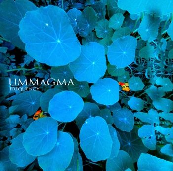 ummagma_frequency_cover